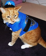 Homemade Cat Cop Costume