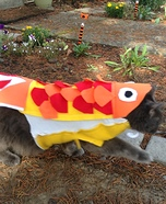 Cat Fish Homemade Costume