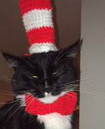 Cat in the Hat Costume for Cat