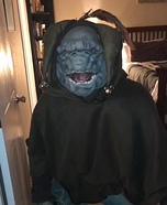 Cat's Eye Troll Homemade Costume