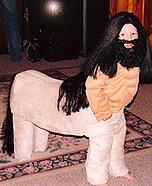 Centaur Costume