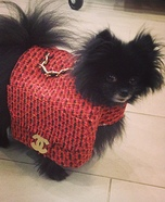Creative costume ideas for dogs: Chanel Bag Dog Costume