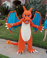 Charizard Homemade Costume