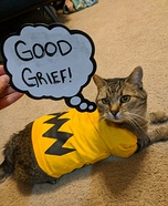 Charlie Brown Cat Homemade Costume