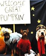 Charlie Brown Great Pumpkin Pet Costumes