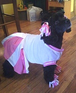 Cheerleader Dog Costume