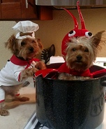 Chef and Lobster Dogs Costume