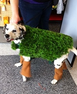 DIY Chia Pet Dog Costume