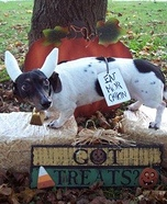 Chick-fil-A Cow Dog Costume DIY