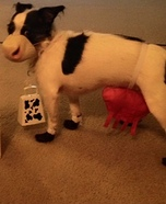 Chick Fil A Cow Dogs Costume