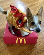 Chicken Nugget Dog Homemade Costume