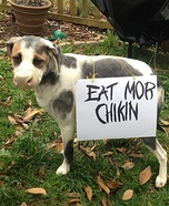 Chickfila Cow Dog Homemade Costume