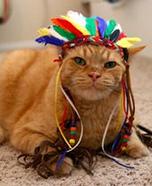 Chief Cat Homemade Costume