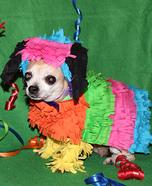 Chihuahua Pinata Homemade Costume