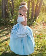 Cinderella Homemade Costume