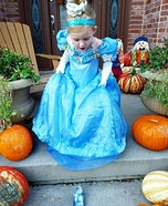 Cinderella Homemade Costume