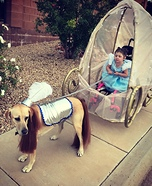 Cinderella and her Carriage Homemade Costume