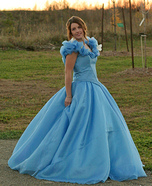 Cinderella Belle of the Ball Homemade Costume