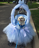 Cinderellie Homemade Costume