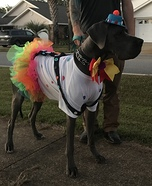 Clown Dog Homemade Costume