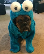 Cookie Monster Dog Homemade Costume
