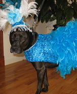 Creative costume ideas for dogs: Copacabana Showgirl Dog Costume