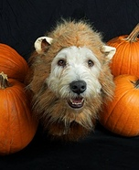 Cowardly Lion Dog Halloween Costume