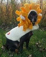 Cowardly Lion Dog Homemade Costume