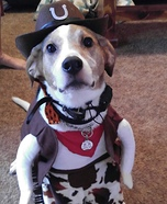 Cowboy Dog Halloween Costume Idea