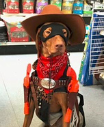 Cowboy Dog Homemade Costume