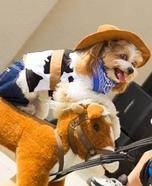 Cowboy Dog Homemade Costume