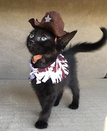 Cowboy Kitten Homemade Costume
