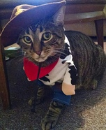 Cowboy Kitty Homemade Costume