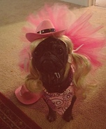 Cowgirl Princess Dog Homemade Costume