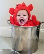 Crabby Crab Costume