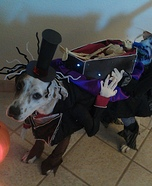 Creative costume ideas for dogs: The Crazies Carrying the Dead