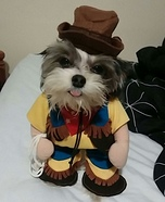 Crazy Cowboy Dog Costume