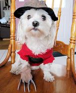 Freddy Krueger Costume for Dogs