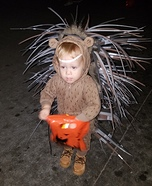 Cute Baby Porcupine Homemade Costume