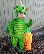 Cute Little Dragon Homemade Costume