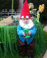 Cutest Gnome Homemade Costume