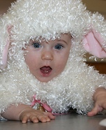 Cutest Little Lamb Costume