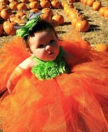 Cutest Pumpkin in the Patch Homemade Costume