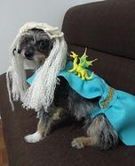 Daenerys Targaryen Dog Homemade Costume