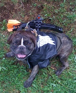 Daryl Dixon from the Walking Dead Homemade Dog Costume