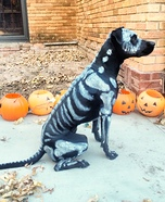 Death Dog Homemade Costume