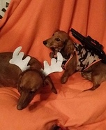 Deer Season Dogs Homemade Costume