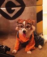 Despicable Me Minion Dog Costume