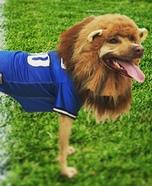 Detroit Lions Mascot Homemade Costume