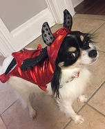 Cute Devil Dog Costume